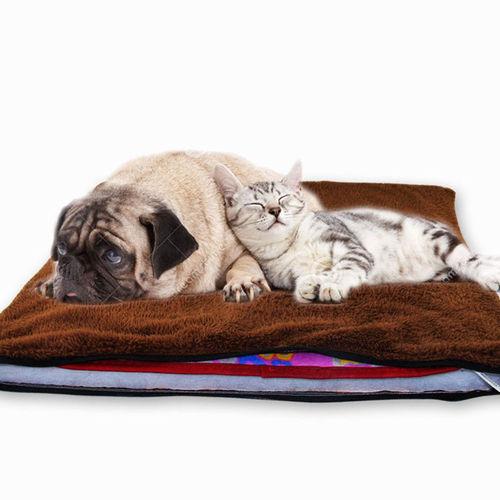 חורף חם לבעלי החיים שלכם! משטח חימום חשמלי לכלבים, חתולים וחיות אחרות ב79 ש