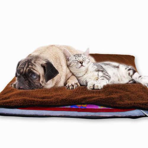 חורף חם לבעלי החיים שלכם! משטח חימום חשמלי לכלבים, חתולים וח...